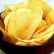Uruguay en la Ruta de las Papas Chips