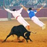 Esa manía de ver si el toro te mata