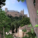 Admirado jardín de un uruguayo en Segovia