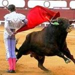 Aquél Montevideo taurino