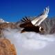 Mendoza a vuelo de cóndor