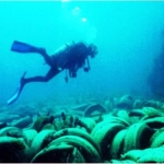 El peor arrecife del mundo