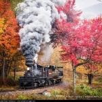 Tren a vapor, la experiencia