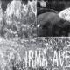 Irma Avegno, realmente inconveniente