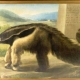 El oso hormiguero más famoso