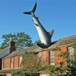 La casa del tiburón