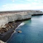 Ballenas y jabalíes retozando a la vista de acantilados
