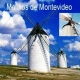 Los molinos harineros en Montevideo