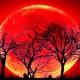 """La """"Luna de Sangre"""", otra vez se acaba el mundo"""