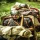 Ejercicios para la guerra de los soldados romanos
