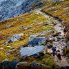 Los chaskis y los caminos del inca