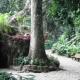 Rincones del Mundial, el Parque Lage