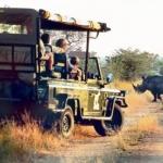 Los parques africanos
