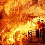 La cueva que los gusanos iluminan