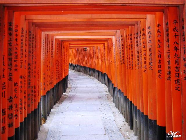 1 camino de toriis