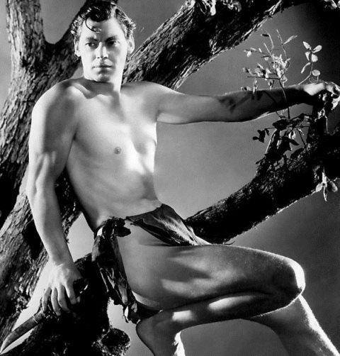 2-tarzan-johnny-weissmuller-1932-everett