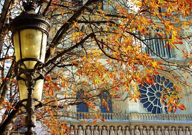 ¡Feliz otoño, París!