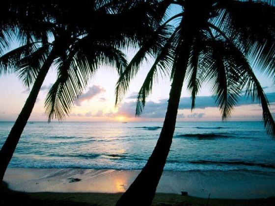 Barbados_Island_05