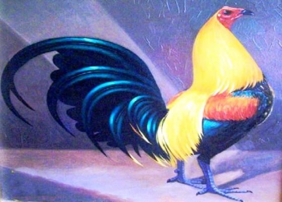Riña de gallos en Montevideo | Viajes