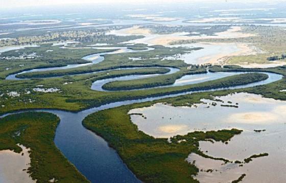 Delta del Salum