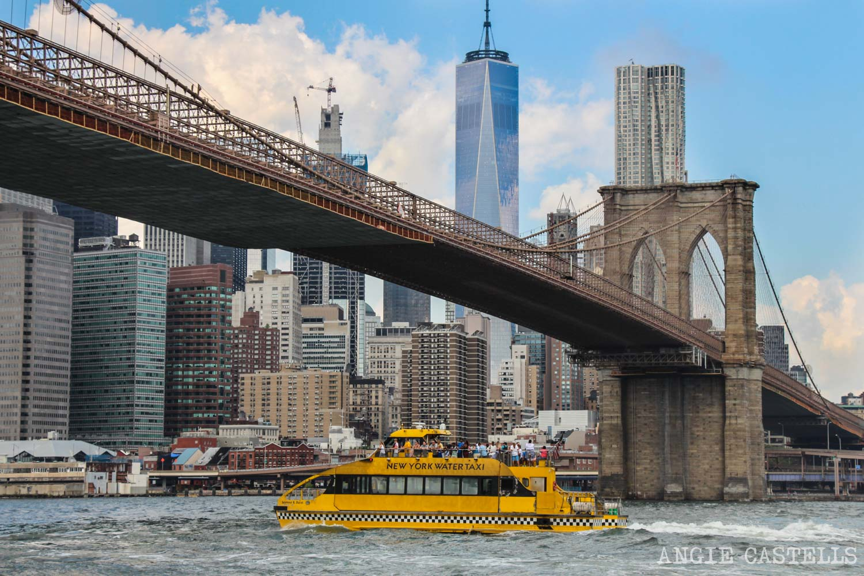 Excursiones-Nueva-York-Tour-Water-Taxi-rios-Brooklyn-Bridge