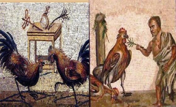 Leyes de Tennessee sobre peleas de gallos