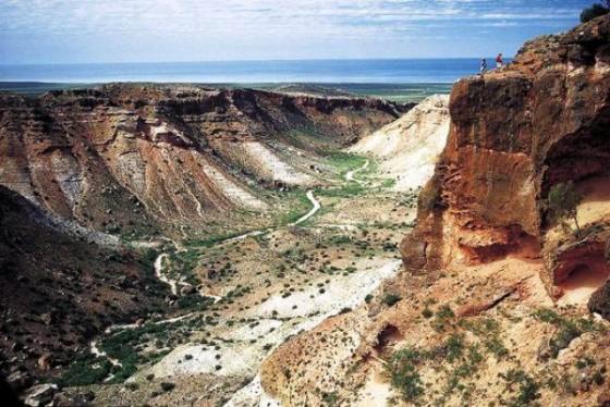 25 patrimonios mundiales mas...-http://viajes.elpais.com.uy/wp-content/uploads/Parque-Ningaloo2-560x374.jpg