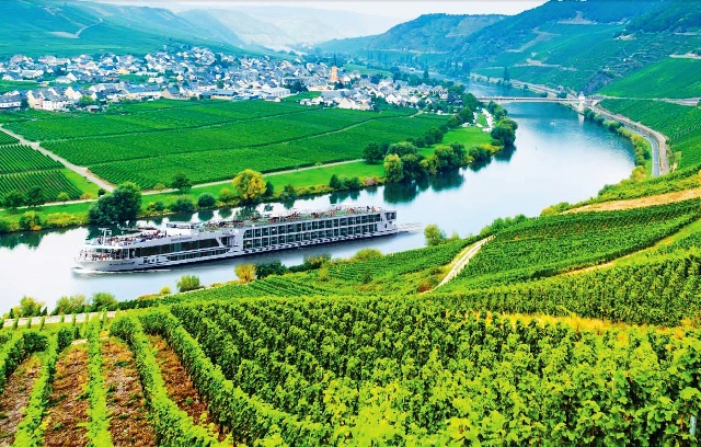 Scenic Cruises RHIN MOSELA Wineyards