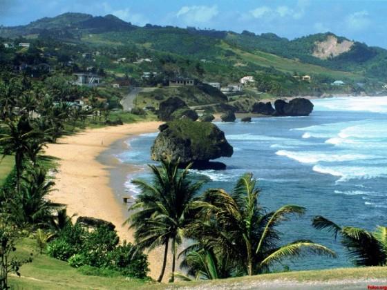 Tropical-Barbados-fondos-de-pantalla