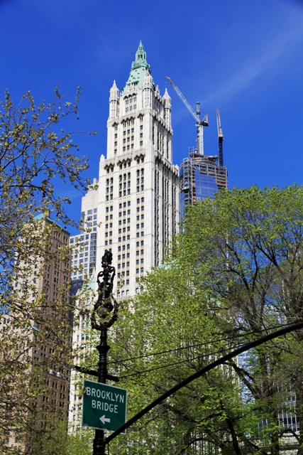 USA-NYC-The_Woolworth_Building3