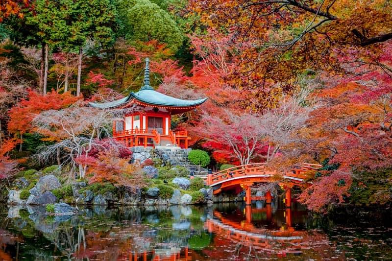 autumn-daigo-ji (1)