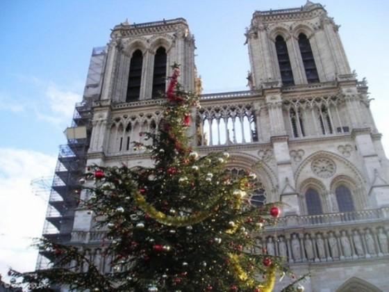 catedral-de-notredame-en-paris-en-navidad-t5086