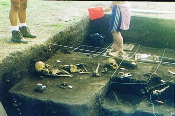excavacionescerritos