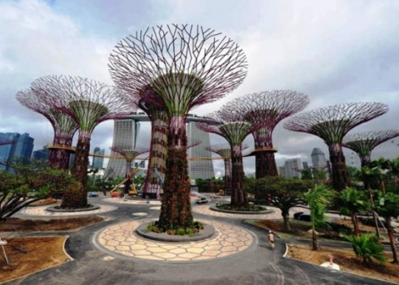 gardens-by-the-bay-supertrees-singapore-1