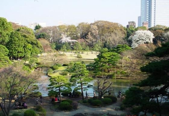 jardin-rikugien-tokyo