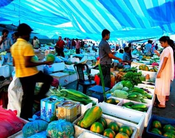 maldives_011p