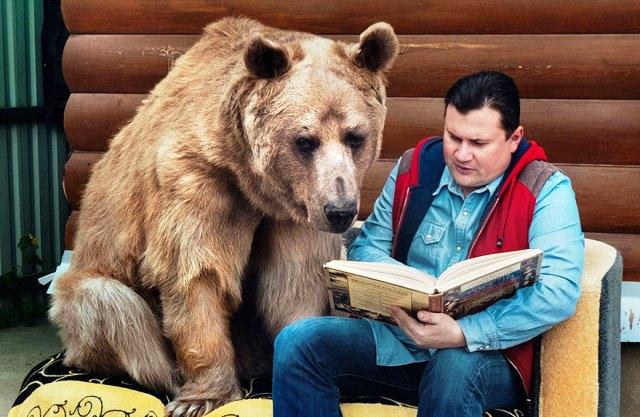 oso-adoptado-stepan-familia-rusa-2