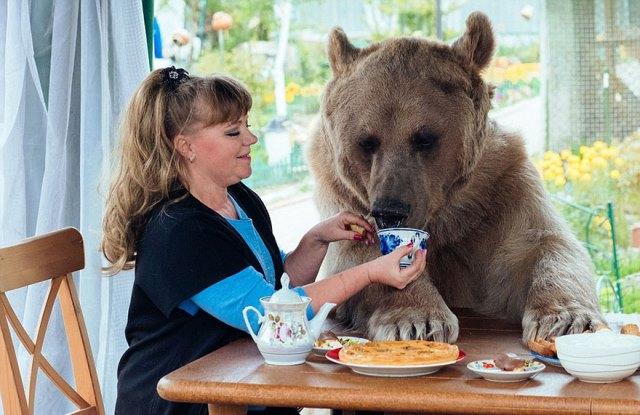 oso-adoptado-stepan-familia-rusa-3 (1)