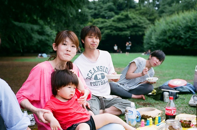 picnic-Japan
