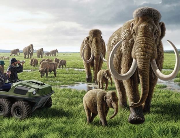 pleistocene-park-art_final_ipad