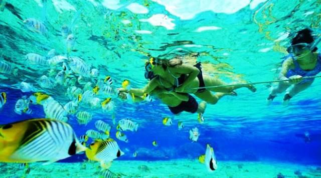 snorkeling(1)